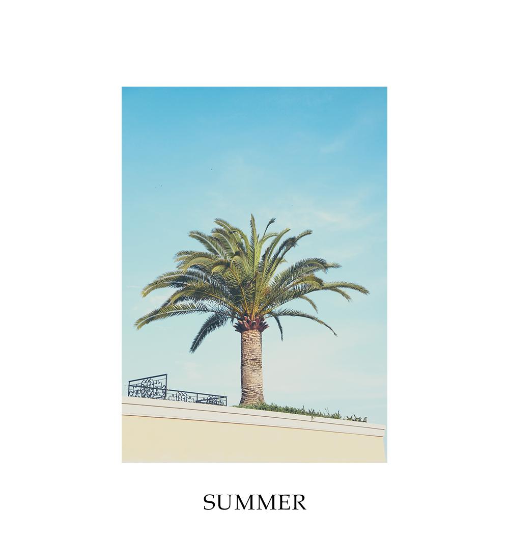 북유럽 여름감성 식물 캔버스액자 summer - 제이자크, 29,000원, 액자, 벽걸이액자